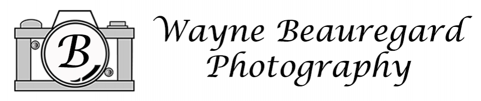 Wayne Beauregard Photography